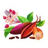 Kakao mit Bohnen und Blumen Lizenzfreie Stockbilder