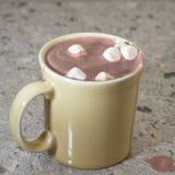 Kakao mit Eibischen Stockfotos
