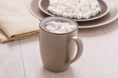 Kakao mit Minieibischen Stockfotografie