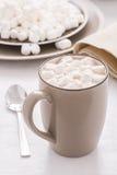 Kakao mit Minieibischen Stockbild