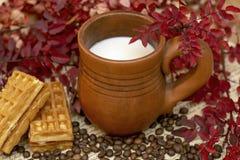 Kakao mleko w handmade stein otaczającym jesieni roślinami czerwony kolor i gofry fotografia stock