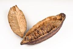 Kakao owoc Fotografia Royalty Free
