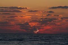 Kakao Plażowy wschód słońca  obrazy royalty free