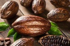 Kakao strąki i kakaowe fasole na drewnianym stole obraz stock