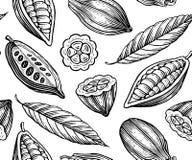 Kakao wzór Obraz Stock