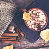 Kakao z marshmallow zdjęcia royalty free