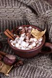 Kakao z marshmallow obraz stock