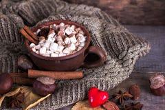 Kakao z marshmallow fotografia stock