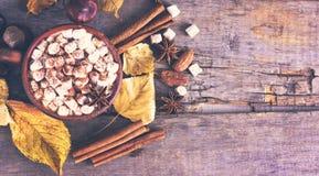 Kakao z marshmallow zdjęcie stock