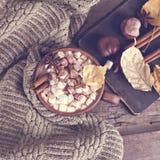 Kakao z marshmallow obrazy stock