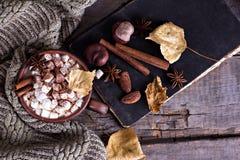 Kakao z marshmallow zdjęcia stock