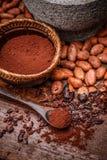 Kakaobönor och kakaopowde arkivbilder