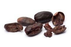 Kakaobönor på vit Royaltyfri Fotografi