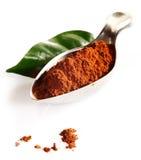 Kakaoblatt und Kakaopulver im Löffel Lizenzfreie Stockfotos