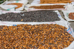 Kakaobohnen, die in der Sonne trocknen lizenzfreie stockbilder