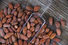 Kakaobohnen mit scooper über hölzernem Hintergrund Stockfoto
