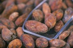 Kakaobohnen mit scooper über hölzernem Hintergrund Stockbild
