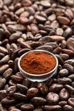 Kakaobohnen und Kakaopulver Lizenzfreies Stockfoto