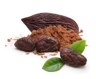 Kakaobohnen und -pulver lokalisiert Lizenzfreie Stockfotografie