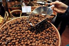 Kakaobohnen von Brussles Stockbilder