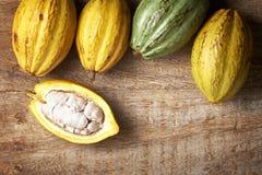 Kakaofrukt Arkivfoto