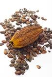 Kakaofrukt och kakaobönor arkivbild