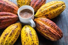 Kakaofrukt och kakaobönor med en kopp av varm kakao royaltyfri fotografi