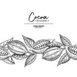 Kakaogräns Mall för vektorsuperfoodteckning Frukt blad vektor illustrationer