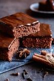Kakaolebkuchen mit Schokolade Lizenzfreies Stockfoto