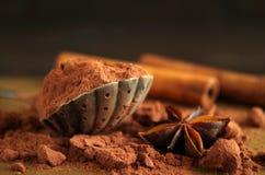 Kakaopulver Royaltyfria Foton