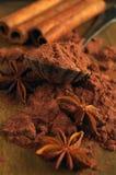 Kakaopulver Fotografering för Bildbyråer