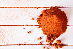 Kakaopulver Royaltyfri Fotografi