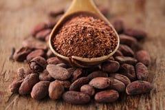 Kakaopulver i sked på grillade kakaochokladbönor Royaltyfri Fotografi