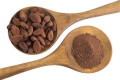 Kakaopulver och kakaobönor som framläggas i en träsked Arkivbild