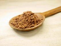 Kakaopulver på träskeden arkivfoton