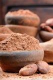 Kakaopulver und Bohnen Stockfotografie