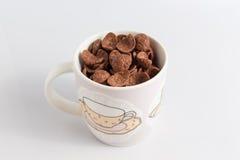 Kakaosädesslag i exponeringsglas på vit royaltyfria bilder