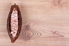 Kakaowa owoc Obraz Stock