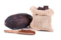 Kakaowa owoc Zdjęcie Royalty Free