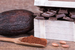 Kakaowa owoc Obrazy Royalty Free