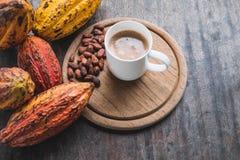 Kakaowe Owocowe i Kakaowe fasole Z filiżanką gorący kakao zdjęcia royalty free