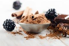 Kakaowy proszek i łamający czekoladowy bar Fotografia Stock