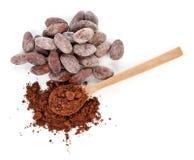 Kakaowy proszek i fasole odizolowywaj?cy na bielu obrazy royalty free