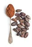 Kakaowy proszek i fasole w łyżce Zdjęcia Royalty Free