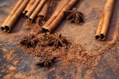 Kakaowy proszek i pikantność Fotografia Stock