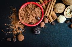 Kakaowy proszek z cynamonem Fotografia Stock