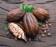 Kakaowy strąk i kakaowe fasole na drewnianym stole Odgórny widok zdjęcie royalty free