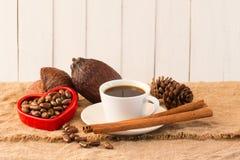 Kakaowy strąk, Kakaowe fasole, kakaowy proszek, kakaowy filiżanka cynamon na whit Zdjęcia Royalty Free
