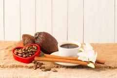 Kakaowy strąk, Kakaowe fasole, kakaowy proszek, kakaowy filiżanka cynamon na whit Obrazy Royalty Free