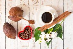 Kakaowy strąk, Kakaowe fasole, kakaowy proszek, kakaowy filiżanka cynamon na whit Fotografia Royalty Free